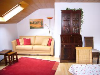 Vacation Apartment in Tübingen - 538 sqft, quiet, spacious, comfortable (# 1856) - Herrenberg vacation rentals