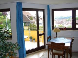 Vacation Apartment in Tübingen - 388 sqft, quiet, bright, comfortable (# 1855) - Tübingen vacation rentals