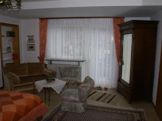 Vacation Apartment in Neckarsteinach - great views (# 1201) - Neckarsteinach vacation rentals