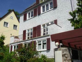 LLAG Luxury Vacation Apartment in Jena - 753 sqft, large terrace (# 1424) - Kranichfeld vacation rentals