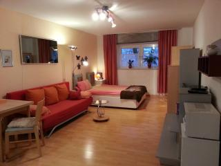 Vacation Apartment in Munich - 323 sqft, nice, clean, modern (# 854) - Kirchheim b.München vacation rentals