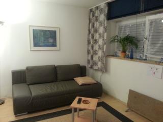 Vacation Apartment in Munich - 431 sqft, nice, clean, modern (# 855) - Eichenau b Muenchen vacation rentals