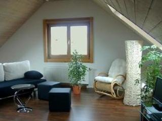 Vacation Apartment in Holzmaden - 581 sqft, spacious, comfortable, well furnished (# 2123) - Goppingen vacation rentals
