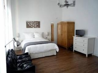 Vacation Apartment in Wiesbaden - 452 sqft, ideal for business travelers (# 585) - Wiesbaden vacation rentals