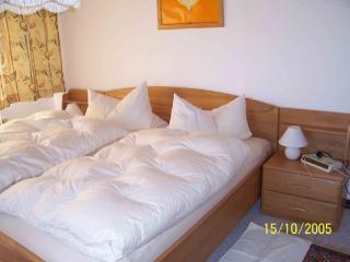 Vacation Apartment in Villingen im Schwarzwald - 807 sqft, peaceful, lovely, relaxing (# 1712) - Villingen-Schwenningen vacation rentals