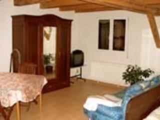Vacation Apartment in Endingen am Kaiserstuhl - nice, central, relaxing (# 857) - Black Forest vacation rentals