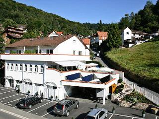 Vacation Apartment in Heidelberg - affordable, quiet single house, beautiful furnishings (# 29) - Moerlenbach vacation rentals