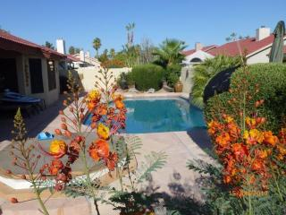 Luxury 4 Bed 2 Bath & Private Heated Spa and Pool - Central Arizona vacation rentals