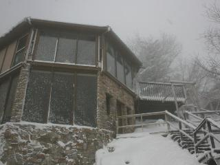 Aspen Ski Loft at Beech Mountain, North Carolina; 50 Steps From Ski Slope! - Beech Mountain vacation rentals