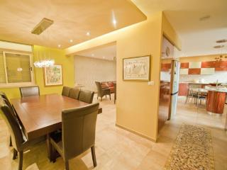 Spectacular 5 BDR   Central Jerusalem Vacation Apt - Jerusalem vacation rentals