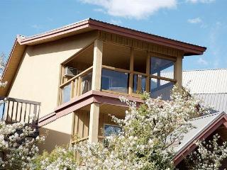 BEST VIEW CONDO/PRIVATE HOT TUB - Whistler vacation rentals