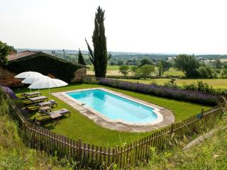 Hopkins gite - Chateau de Montoussel near Toulouse - Toulouse vacation rentals