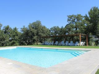AZZURRO APARTMENT private garden / pool - Pergine Valdarno vacation rentals