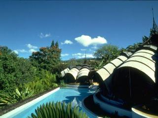 The Onion House- Vacation in a work of art! - Big Island Hawaii vacation rentals