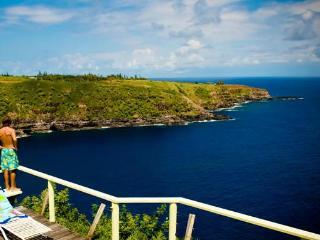 Seaside Cottage - Hana vacation rentals