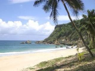 Surfers Beach (2 mins drive distance) - Starfish #1 or Carey #4 - Aguadilla - rentals