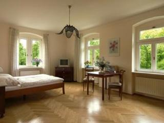 Single Room in Dresden - 312 sqft, elegant, nice, comfortable, Elbe river views (# 404) - Dresden vacation rentals