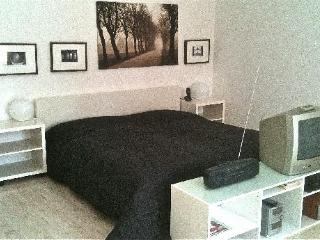 Single Room in Starnberg - 431 sqft, a few minutes from center, private terrace, Wifi (# 846) - Kirchheim b.München vacation rentals