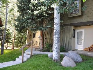 Very nice remodeled Gold rated home on the Gore Creek. 3 bedrooms with a loft - Vail vacation rentals