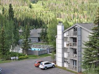 Gore Creek Meadows C14 3 bedroom 3 bathroom Condo - Vail vacation rentals