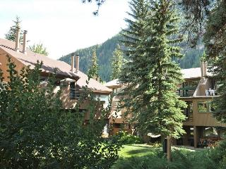High end studio in Pitkin Creek on Free Vail bus shuttle - Vail vacation rentals