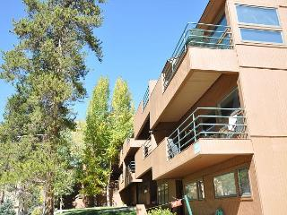 Modern two bedroom condo on Vail free bus shuttle - Vail vacation rentals