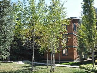 Timber Falls Three bedroom two bathroom remodeled condo in East Vail - Vail vacation rentals