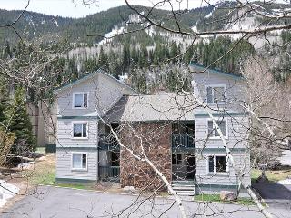 Call now for special rates for this Luxury Condo in East Vail - Vail vacation rentals