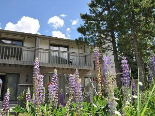 Spacious 4 bedroom House in Vail - Vail vacation rentals