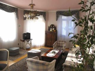 LLAG Luxury Vacation Apartment in Baden Baden - spacious, nice, clean (# 252) - Black Forest vacation rentals