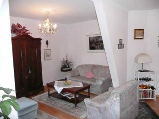 LLAG Luxury Vacation Apartment in Baden Baden - nice, clean (# 254) - Gaggenau vacation rentals
