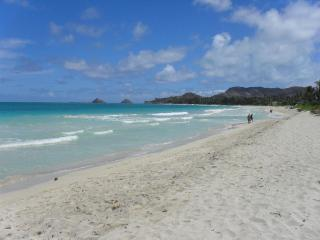 Windward Hawaii Beachfront Paradise - Kailua Beach - Kailua vacation rentals