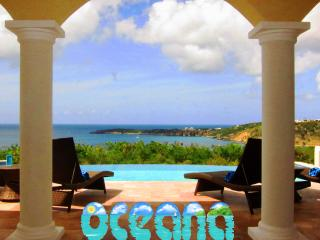 Oceana Villa Anguilla - Brand New 2 bedroom - The Valley vacation rentals