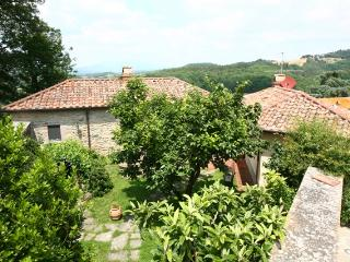 Beautiful Villa in a Charming Town - Villa Francesca - Monterchi vacation rentals