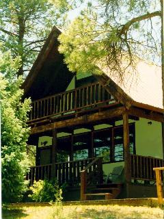 Serendipity Mountain Home & Studio - Pagosa Springs vacation rentals