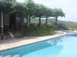 Nice House with Internet Access and Garden - Rincon vacation rentals