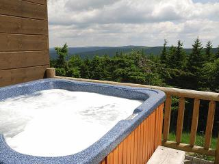 Loggers Run - 7 - Snowshoe vacation rentals