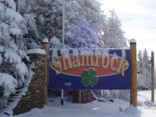 Spacious 4 bedroom House in Snowshoe - Snowshoe vacation rentals