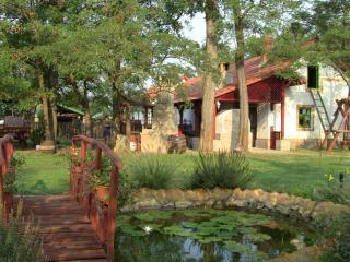 Peaceful quiet Nemeth farm appartman - Szeged vacation rentals