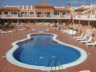 Beautiful Condo with Internet Access and Satellite Or Cable TV - Caleta de Fuste vacation rentals