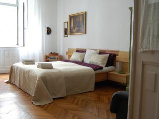Painter 50 M2 Apartment With Danube River View +AC - Budapest vacation rentals
