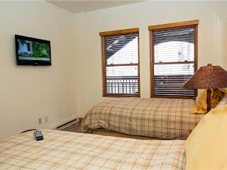 Bear Creek Lodge 301C - Mountain Village vacation rentals