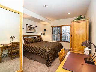 Bear Creek Lodge 301B - Mountain Village vacation rentals