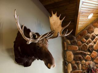 Royal Moose Lodge - 7 Master suites/sleeps 24 - swimming pool, game room - Branson vacation rentals