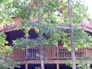 Hideaway Haven -5 bedrooms / 3 baths / sleeps 18 - Branson vacation rentals