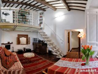 Charming attic Navona Sq panoramic terrace Wifi - Rome vacation rentals