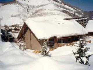 Great Location! Lionshead Mountain Home, Vail, CO - Vail vacation rentals