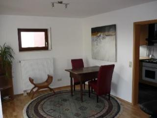 Vacation Apartment in Tübingen - quiet, comfortable (# 2198) - Baden Wurttemberg vacation rentals
