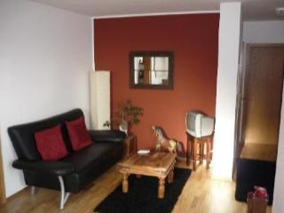 Vacation Apartment in Tübingen - 463 sqft, quiet, comfortable (# 2198) - Tübingen vacation rentals