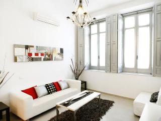 FANTASTIC APARTMENT!!! Beautifull and Espacious 2 bedrooms Apartament in Málaga  city center - Malaga vacation rentals